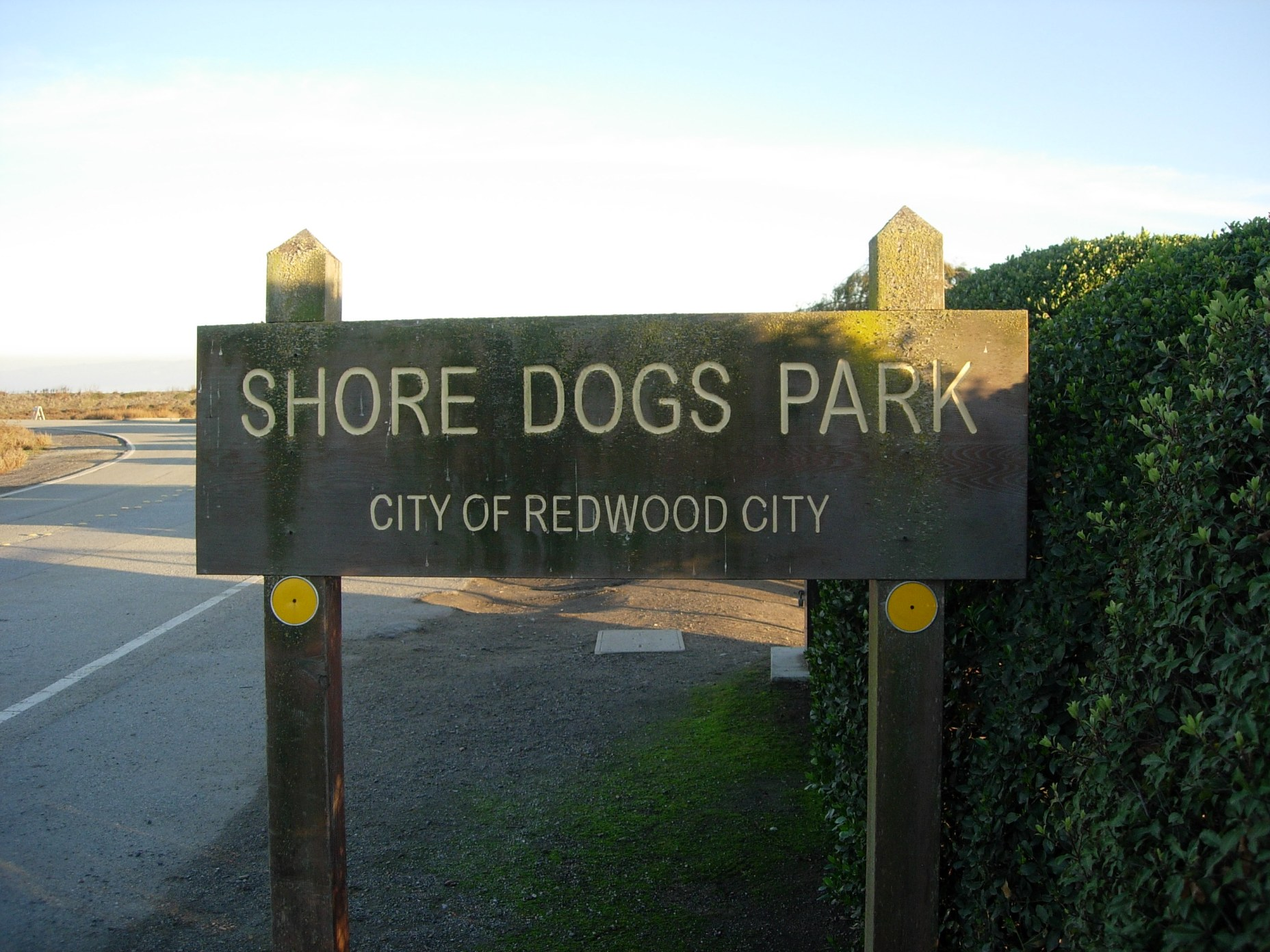 Shore DogsPark