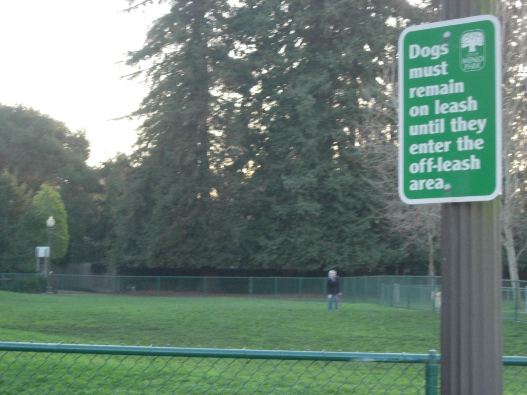 Willow Oaks DogPark