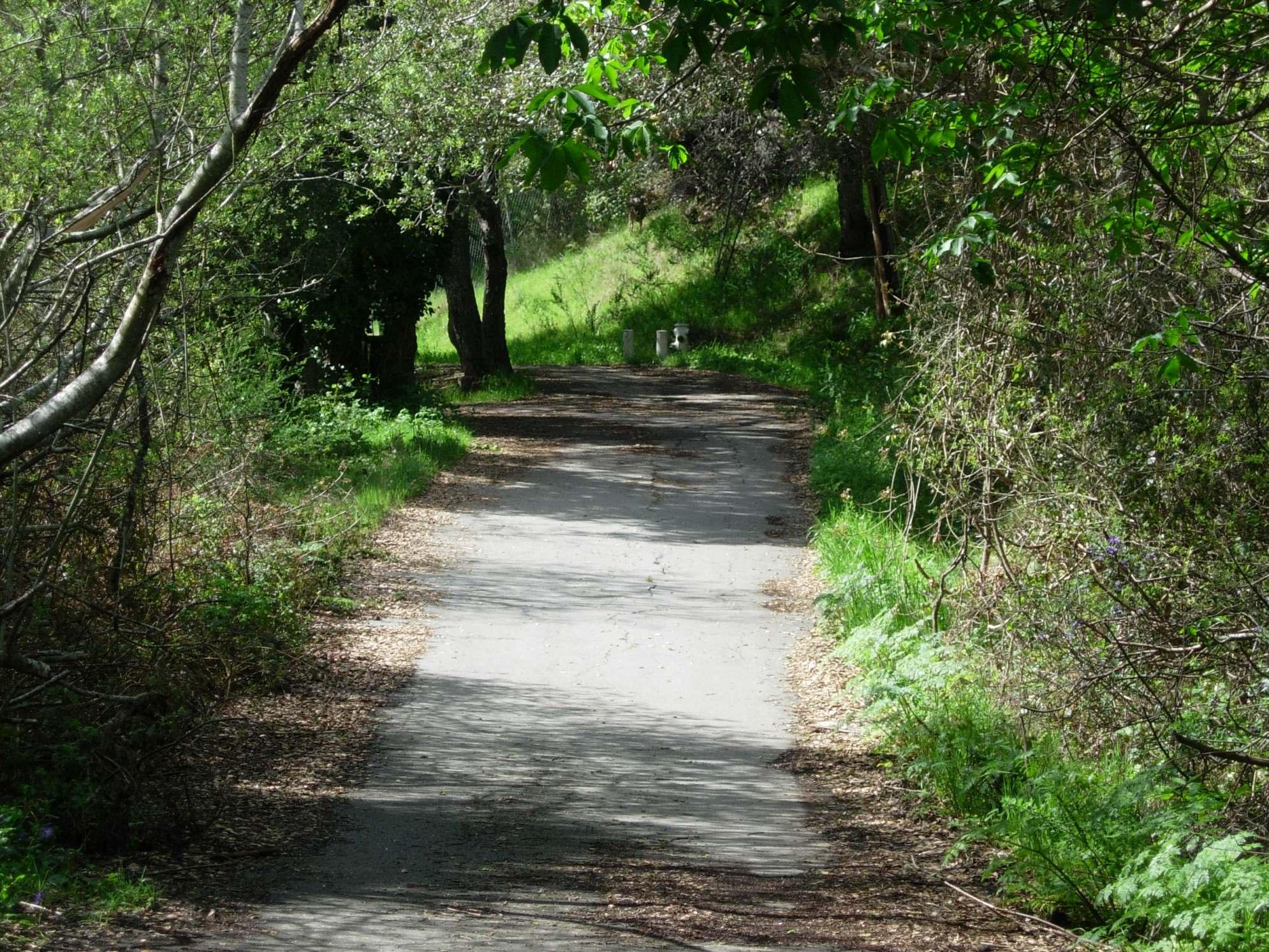San Juan Canyon Trail, Belmont,CA